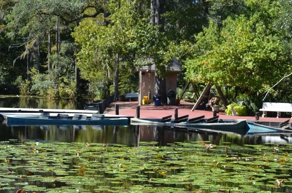 Cypress Gardens Charleston Sc Garden Ftempo